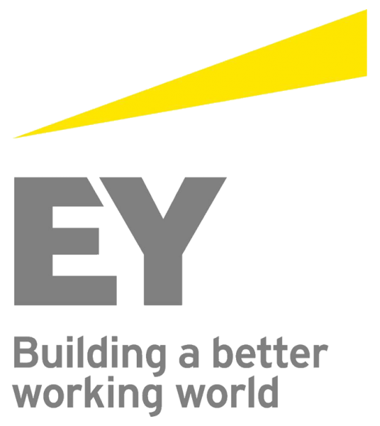 Horsens & Friends sponsor - EY