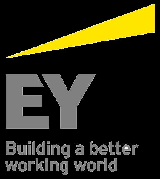 Horsens & Friends sponsor - EY