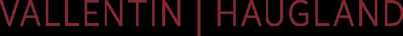 Horsens & Friends sponsor - Vallentin Haugland